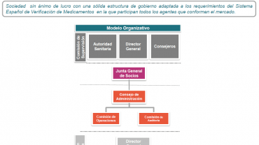 NMVO: the creation of a management organization